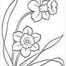 18+ Poppy Coloring Pages - PDF, JPG