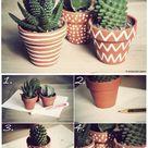 Pot Designs