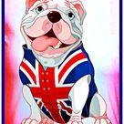 British Bull Dog .. 🔥💓🤍💙😊