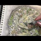 Adult Coloring - Linda Ravenscroft Part 1