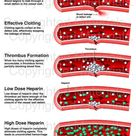 The Effect of Heparin on the Blood Vessels
