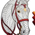 Bridled Horse  PDF Animal Coloring Page | Etsy