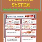 Task Cards on Digestive System with Answer Keys   Human Body Task Cards in Printable PDF Format