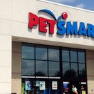 How To Get A Job At Petsmart Petsmart Jobs Careers 2020 In 2020 Petsmart Petsmart Grooming Coupons How To Get