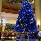 Blue Christmas Trees