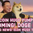 DOGECOIN HUGE PUMP STILL INCOMING! DOGE DAY! 420! BIG NEWS!  ELON MUSK TWITTER