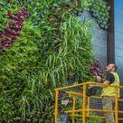 Pflanzschalen SkALE 48 Stück   im Greenbop Online Shop kaufen