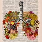 Wall art print Flowery Lungs Print  Anatomical Lungs  Human   Etsy