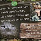 Swamp Theme