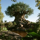 Walt Disney World Vacation Planning - The Magic For Less Travel