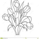 Tulpen, Bloemen, Sier Zwart-witte Kleurende Pagina's Vector Illustratie - Illustration of lijn, installatie: 71366884