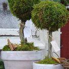 Pflanzkübel im Winter 3 Deko Ideen aus Naturmaterial, Glanz & Spielzeug
