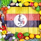Learn All About Traditional Ugandan Cuisine