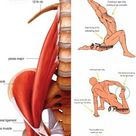 5 Exercises To Relieve Hip Pain And Strengthen Your Hip Flexor - GymGuider.com