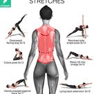 BETTER POSTURE STRETCHES