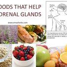 Foods that help Adrenal Glands....