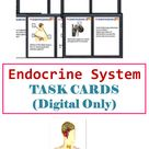 Endocrine System   Human Body   Digital Task Cards   Virtual Task Cards with Answer Keys