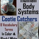 The Human Body Systems Activity (Cootie Catcher Foldable Review Game)