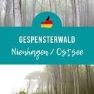 Gespensterwald Nienhagen Ostsee