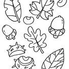 Kleurplaat Herfst - blaadjes - nootjes