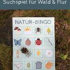 Mit Kindern die Natur entdecken Naturbingo   ein Suchspiel für Wald und Flur   Lavendelblog