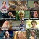 Harry Potter Twilight