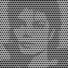 Optical Illusions Test