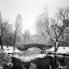 Gerald Berghammer Snow covered Central Park, New York, USA, black and white photography, landscape