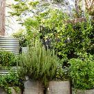 Brian and Trish Perkins - The Design Files | Australia's most popular design blog.