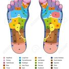 Foot reflexology. Alternative acupressure and physiotherapy health..