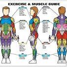 Diabetic Neuropathy Pain Foot/Body Circulation Massager