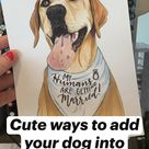 Cute ways to add  your dog into  your wedding