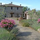 Villas to Rent in Tuscany and Beyond:
