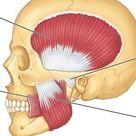 TMJ (Jaw Pain): Two Release Techniques   John Douillard's LifeSpa