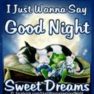 Good Night To You