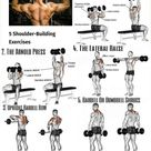 Ways To Shape And Form Your Shoulders - GymGuider.com