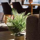 Boho Stoneware Flowerpot - Green/Brown