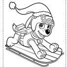 desenhos para colorir patrulha canina 171