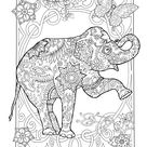 Amazing Coloring Book For Adults Packed with beautiful animals