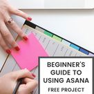 Beginner's Guide To Using Asana, Free Project Management Tool | Nicole C. W.