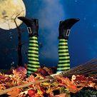 Amazon.com: halloween decorations clearance