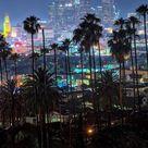 City lights and palm trees  Downtown LA at night! - :@killakristennn