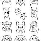 Dog / Line drawing