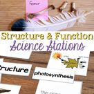 Structure and Function How Organisms Live, Behave, Reproduce, and Grow