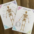 Skeletal System Labeling Activity Sheets - Biology Printable - Anatomy and Physiology Childrens Game - Download Digital File