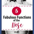 Fun Facts about the Fabulous Functions of the Nose - Dr Momma Says