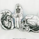 Skeleton Pillow anatomical skeleton gift for surgeon orthopedic nurse appreciation nursing student human anatomy halloween nurse ideas