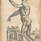 Andreas Vesalius   De humani corporis fabrica (Of the Structure of the Human Body)   The Metropolitan Museum of Art
