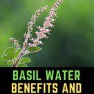Basil Water