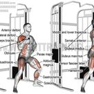 Gain Muscles ~ 1 WEIRD TIP FOR AN INSTANTSTRENGTH INCREASE AT THE GYM